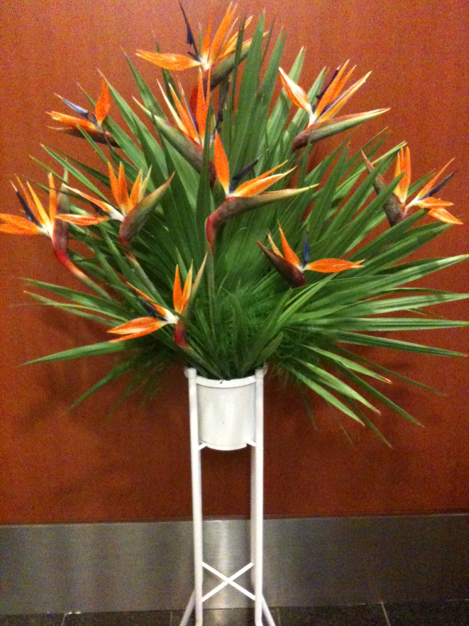 CONG120 Bird of Paradise Stand Flowers